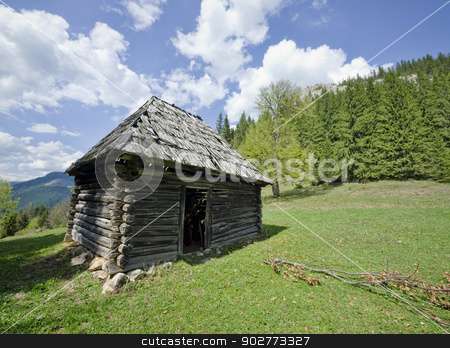 wooden house stock photo, Romanian wooden house from an old village by Ioan Panaite