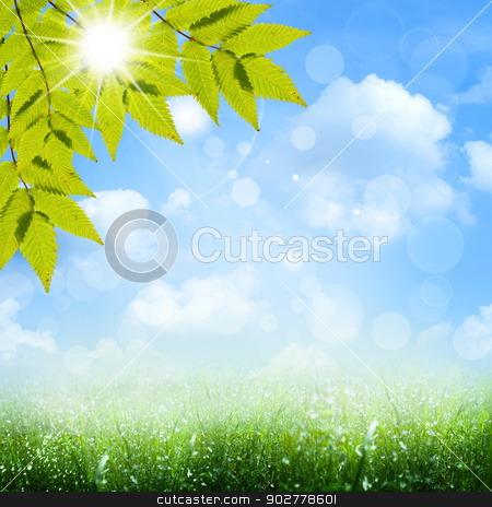 Under the blue skies. Abstract spring and summer backgrounds stock photo, Under the blue skies. Abstract spring and summer backgrounds by tolokonov