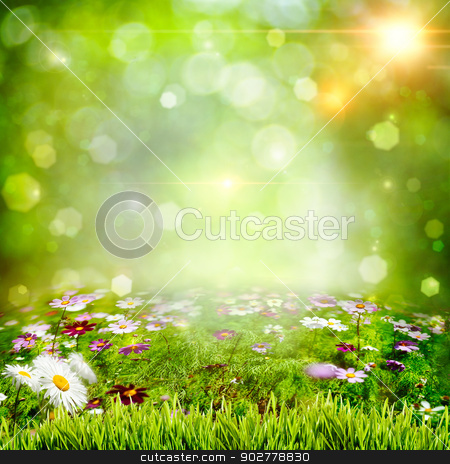 Abstract natural backgrounds with chamomile flowers stock photo, Abstract natural backgrounds with chamomile flowers by tolokonov