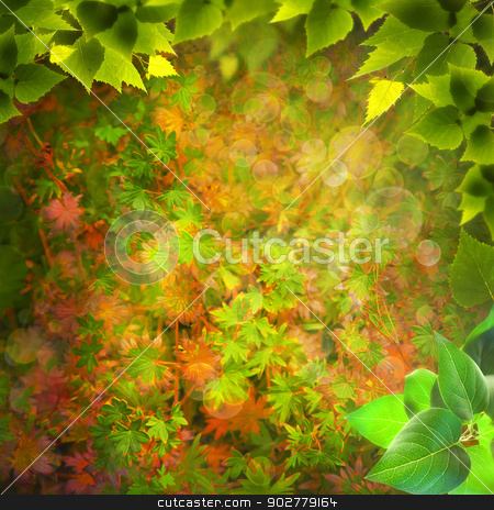 Magical forest. Abstract natural backgrounds for your design stock photo, Magical forest. Abstract natural backgrounds for your design by tolokonov