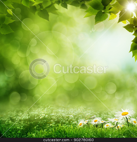 Beauty morning in the green forest, eco backgrounds stock photo, Beauty morning in the green forest, eco backgrounds by tolokonov