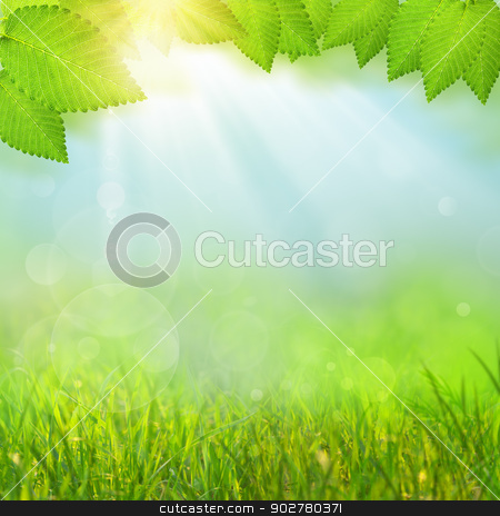 Green natural backgrounds with selective focus stock photo, Green natural backgrounds with selective focus by tolokonov