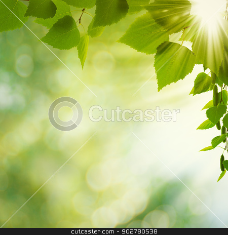 Beauty Summer Day. Abstract environmental backgrounds for your d stock photo, Beauty Summer Day. Abstract environmental backgrounds for your design by tolokonov