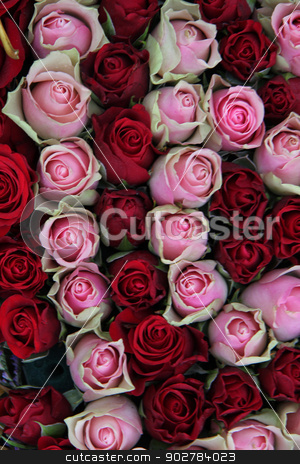 Wedding centerpiece in red and pink stock photo, Red and pink rose buds in a wedding centerpiece flower arrangement by Porto Sabbia