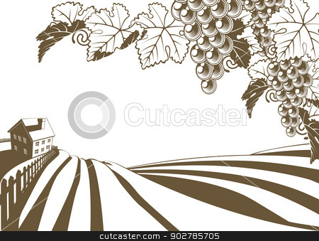 Vineyard Grapevine Farm Illustration stock vector clipart, Vineyard grapevine farm illustration with rolling planted hills and farmhouse. Grape bunches and vine in foreground. In vintage retro style. by Christos Georghiou