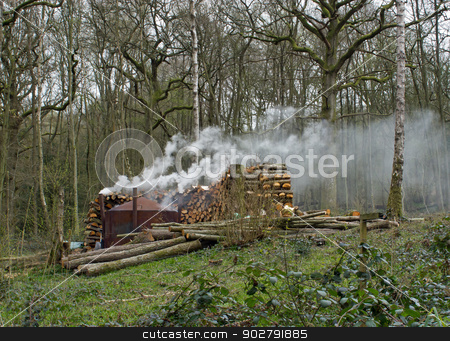 Charcoal Burning stock photo, Charcoal burning in modern kiln in English woodland by Susan Robinson