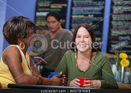 Two Happy Cafe Customers stock photo, Two happy cafe female customers sitting together by Scott Griessel