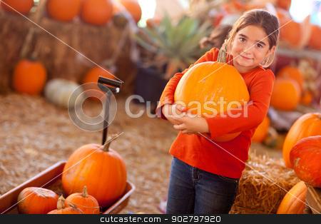 Cute Girl Choosing A Pumpkin stock photo, Cute Girl Choosing A Pumpkin at A Pumpkin Patch One Fall Day. by Andy Dean