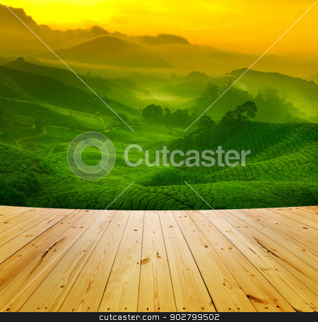 Tea plantation stock photo, Wooden floor and sunrise view of tea plantation landscape at Cameron Highland, Malaysia. by szefei