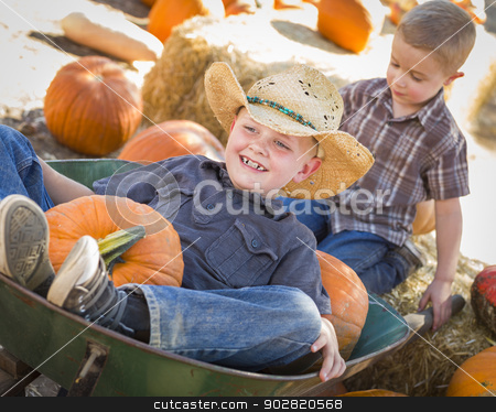Two Little Boys Playing in Wheelbarrow at the Pumpkin Patch stock photo, Two Little Boys Playing in Wheelbarrow at the Pumpkin Patch in a Rustic Country Setting. by Andy Dean