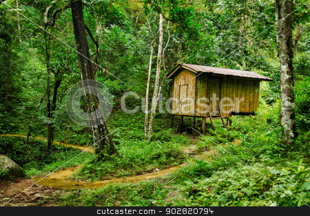 Wooden small house in a tropical forest stock photo, Wooden small house in a tropical forest. Thailand by Alexey Romanov