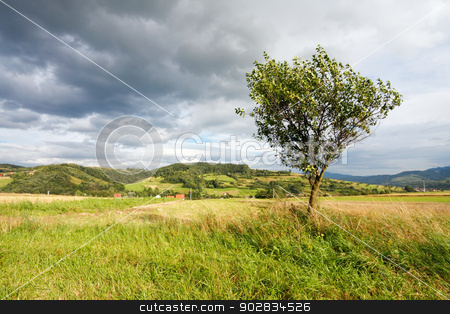 Mountain landscape stock photo, Mountain landscape by WDGPhoto