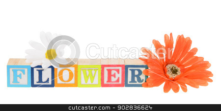 Letter blocks spelling flower with artificial flowers stock photo, Letter blocks spelling flower. Isolated on white. by Richard Nelson