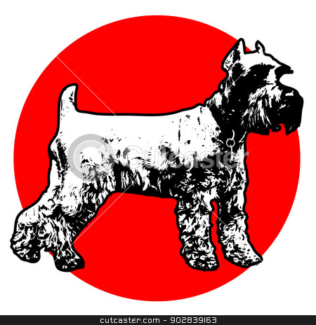 Schnauzer stock vector clipart, Stylized illustration of a standing Schnauzer with a red circle background by Maria Bell