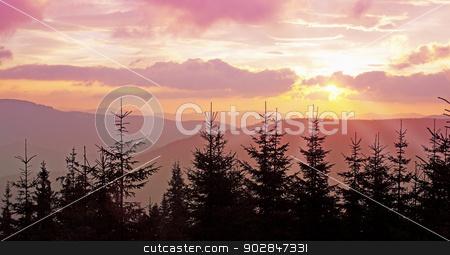 Pink dawn stock photo, Pink dawn in the fir mountain locality by Iuliia   Malivanchuk