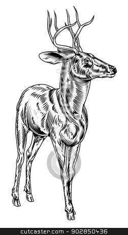 Vintage style woodcut stag deer stock vector clipart, A vintage style woodcut deer illustration of a buck or stag proudly standing and looking into the distance by Christos Georghiou