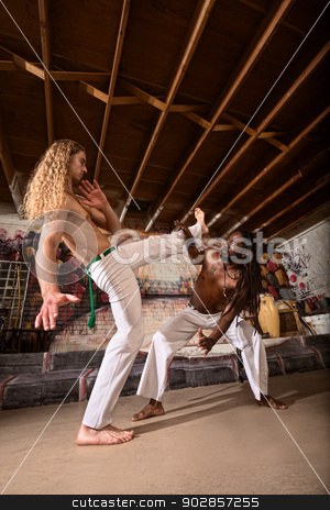 Capoeira Performers Working Out stock photo, White and Black capoeira performers working out  by Scott Griessel