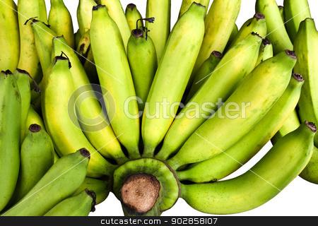 Bunch of bananas. stock photo, Bunch of bananas. by doraclub