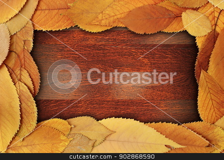 foliage abstract frame stock photo, abstract frame made from cherry golden autumn leaves on beautiful wooden backdrop by coroiu octavian