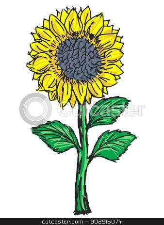 sunflower stock vector clipart, hand drawn, sketch, cartoon illustration of sunflower by Oleksandr Kovalenko