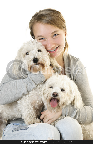 Teen girl with cute dogs stock photo, Pretty teenage girl holding two adorable coton de tulear dogs by Elena Elisseeva