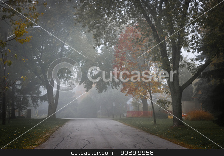 Fall road with trees in fog stock photo, Fall trees on quiet foggy suburban street in Toronto, Canada. by Elena Elisseeva