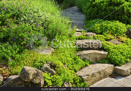 Garden path with stone landscaping stock photo, Natural stone steps and path landscaping in home garden by Elena Elisseeva