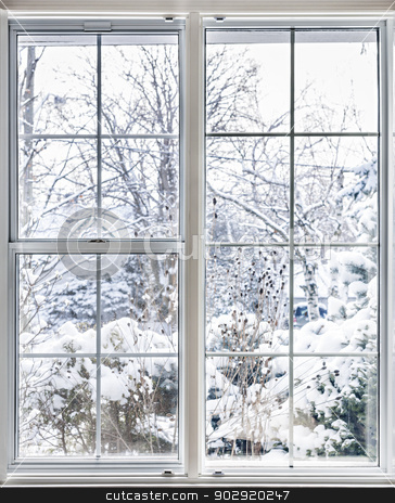 Winter view through window stock photo, Home vinyl insulated windows with winter view of snowy trees and plants by Elena Elisseeva