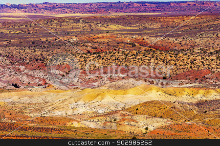 Painted Desert Yellow Grass Lands Orange Sandstone Red Fiery Fur stock photo, Painted Desert Colorful Yellow Grass Lands Orange Sandstone Red Fiery Furnace Arches National Park Moab Utah USA Southwest.  by William Perry