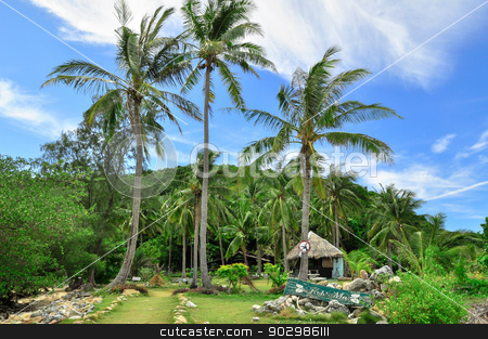 Thailand Beach Temple Rocks Krabi stock photo, Perfect tropical bay on Koh Phi Phi Island, Thailand, Asia. by Thomas Jahn