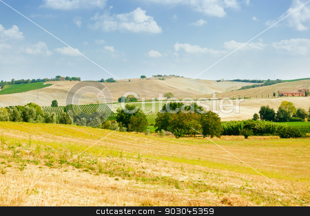 Val d'Orcia landscape stock photo, Summer landscape of fields and farm in Val d'Orcia, Tuscany by Natalia Macheda