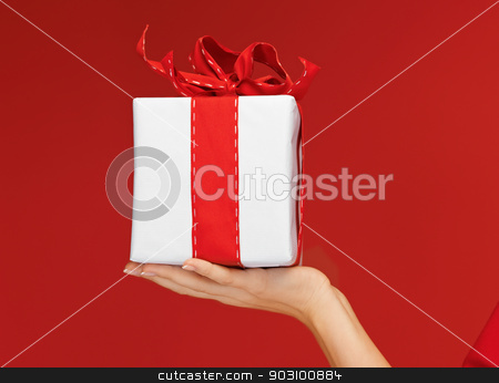 woman's hands holding a gift box stock photo, closeup picture of woman's hands holding a gift box by Syda Productions
