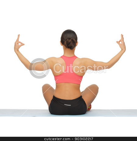 sporty woman doing exercise stock photo, rear view of sporty woman doing exercise by Syda Productions