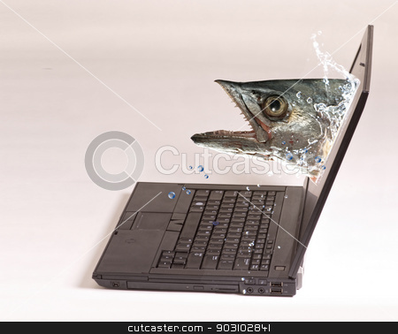 Computer Fishing. stock photo, Monster fish comming out of computer screen . by WScott