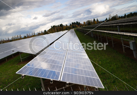 Large Bank Amorphous Solar Panels Green Renewable Energy Sun Power stock photo, Solar energy is gaining popularity and a sun farm is shown here by Christopher Boswell