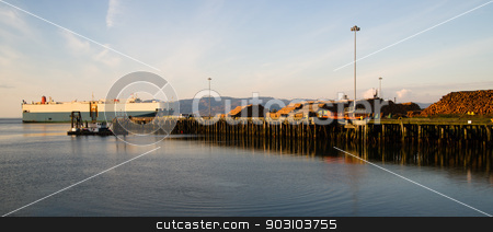 Shipping Lane Columbia River Large Ship Passes Log Pier stock photo, Harvested logs sit waiting for export as a large ship steams past exiting the Pacific Ocean into the Columbia River by Christopher Boswell