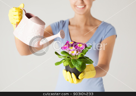 woman holding pot with flower stock photo, woman holding pot with flower and watering can by Syda Productions