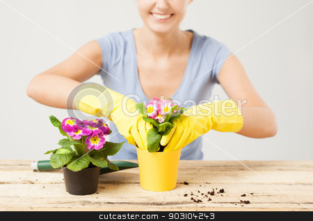 housewife with flower in pot and gardening set stock photo, lovely housewife with flower in pot and gardening set by Syda Productions