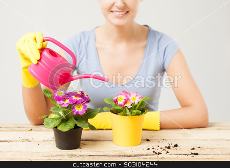 housewife with flower in pot and watering can stock photo, lovely housewife with flower in pot and watering can by Syda Productions