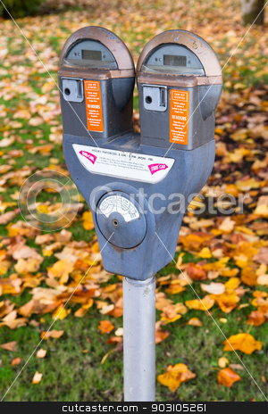 Dual Parking Meter Needs Payment Coin Slot Autumn Downtown stock photo, A dual parking meter downtown by the park by Christopher Boswell