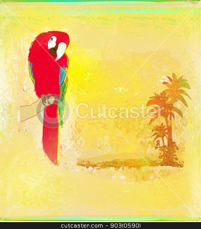 Colourful parrot bird sitting on the perch  stock photo, Colourful parrot bird sitting on the perch  by Jacky Brown