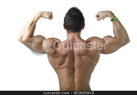 Back double biceps pose by young bodybuilder stock photo, Back double biceps pose by young bodybuilder. Isolated on white background by Stefano Cavoretto