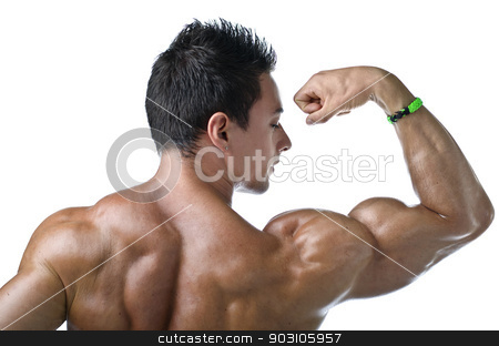 Muscular young bodybuilder's back. Looking at bicep stock photo, Muscular young bodybuilder seen from the back, looking at his own bicep. Isolated on white by Stefano Cavoretto