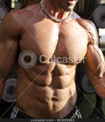 Muscular torso of shirtless man in gym during workout stock photo, Muscular torso of shirtless man in gym during workout. Detail of pecs, abs and biceps by Stefano Cavoretto