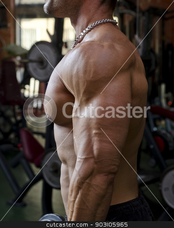Man working out at the gym, side view of chest, pecs and arm stock photo, Man working out at the gym, side view of muscular and ripped chest, pecs and arm muscles by Stefano Cavoretto