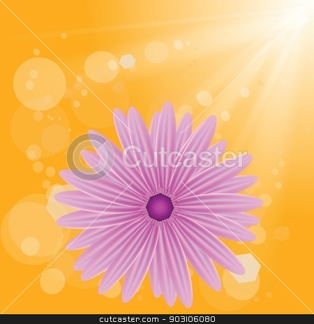 pink flower on sun background stock vector clipart, colorful illustration with  pink flower on sun background for your design by valeo5