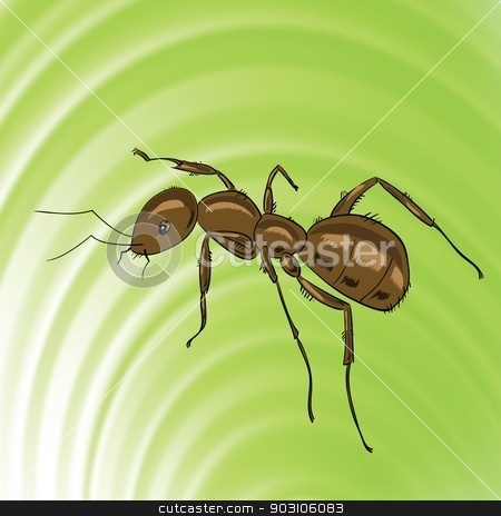 brown ant stock vector clipart, colorful illustration with brown ant for your design by valeo5
