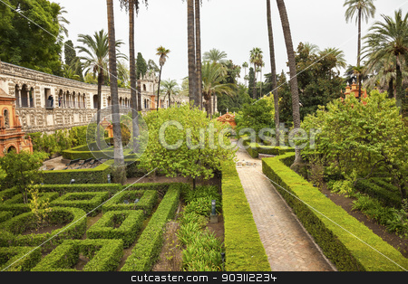 Palms Walls Garden Alcazar Royal Palace Seville Spain stock photo, Walls Garden Alcazar Royal Palace Seville Andalusia Spain.  Originally a Moorish Fort, oldest Royal Palace still in use in Europe. Built in the 1100s and rebuilt in the 1300s.  by William Perry