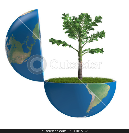 Palm tree inside planet stock photo, Palm tree growing inside opened planet Earth, isolated on white background, concept of ecology. Elements of this image furnished by NASA by Harvepino
