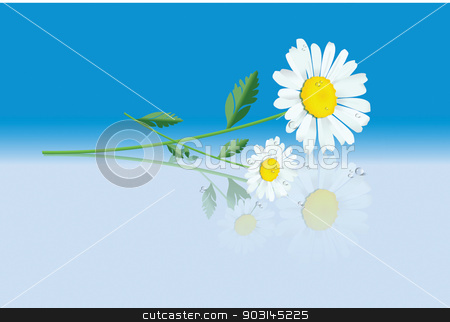 daisys stock vector clipart, daisys by STAR ILLUSTRATION